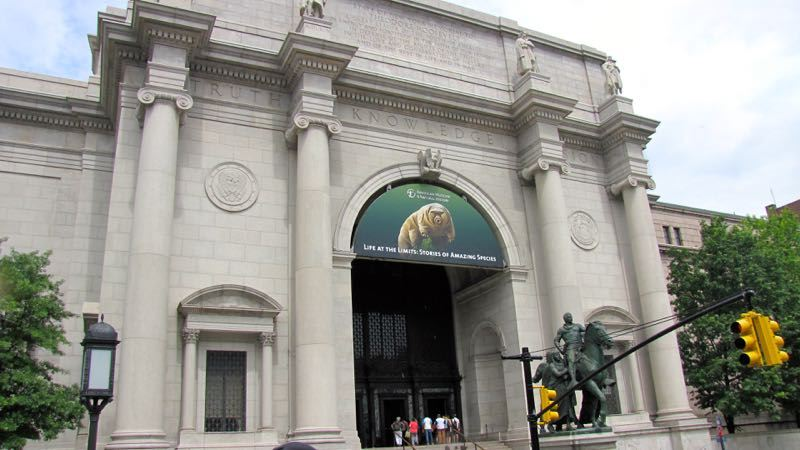 New York American Museum of National History