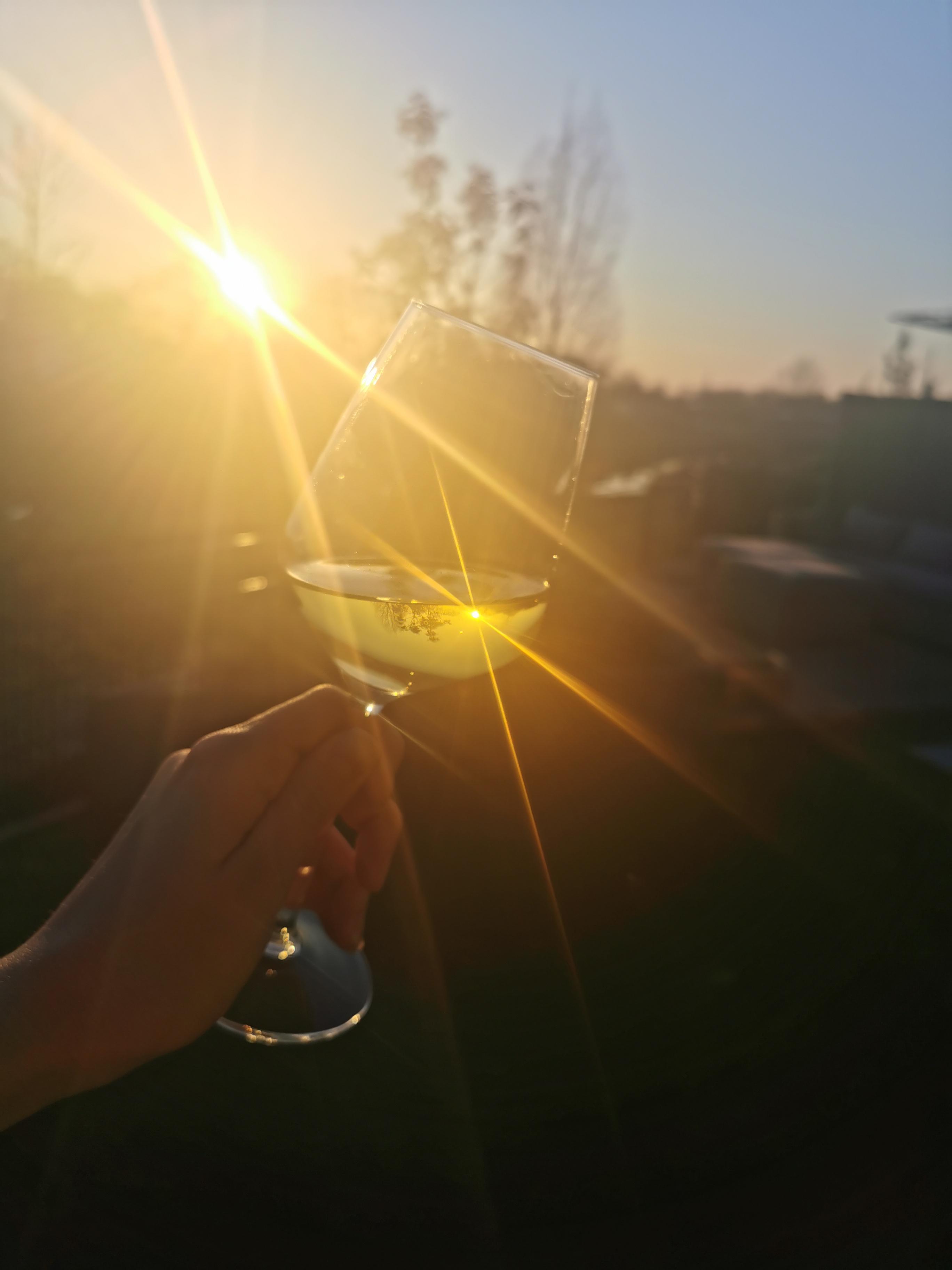 Lauras Life 18 Wijn zonsondergang eerste zonnestralen